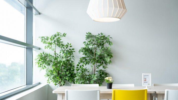 Nowe mieszkania nieopodal Poznania